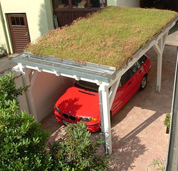 dach begrunen stunning kontakt with dach begrunen latest huser von organic roofs with dach. Black Bedroom Furniture Sets. Home Design Ideas